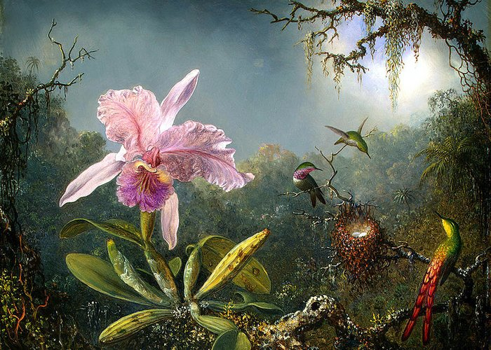 Cattleya Orchid And Three Brazilian Hummingbirds Greeting Card featuring the digital art Cattleya Orchid And Three Brazilian Hummingbirds by Emile Munier