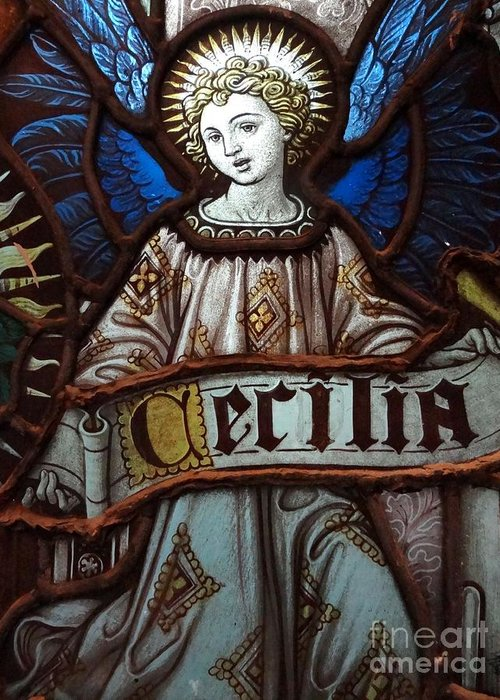 Stained Glass Greeting Card featuring the photograph Cecilia by Ed Weidman