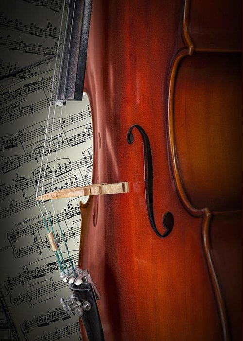 Cello Greeting Card featuring the photograph Cello Bridge And Beethoven by Randall Nyhof