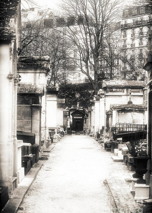 Cemtery Haze Greeting Card featuring the photograph Cemetery Haze by John Rizzuto