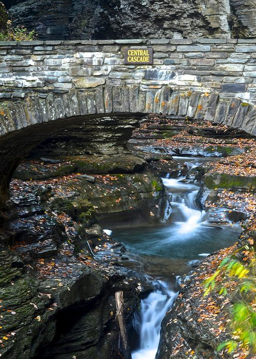 Central Greeting Card featuring the photograph Central Cascade by Frozen in Time Fine Art Photography