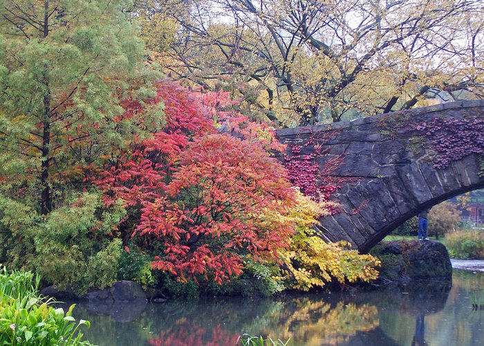 Autumn Greeting Card featuring the photograph Central Park Autumn by Penny Parrish