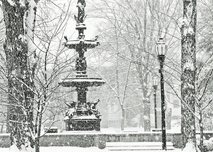 Snow Greeting Card featuring the photograph Central Park by Betty Smithhart