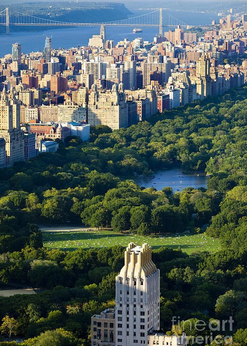 Central Greeting Card featuring the photograph Central Park by Brian Jannsen