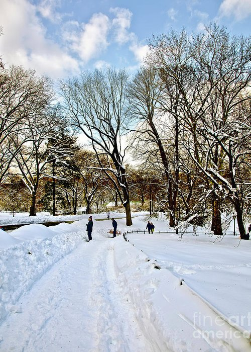 Snow Greeting Card featuring the photograph Central Park Snow Storm One Day Later2 by Madeline Ellis