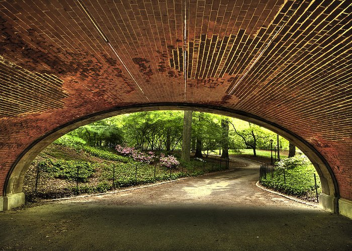 Branches Greeting Card featuring the photograph Central Park Underpass by Kenneth Ortiz