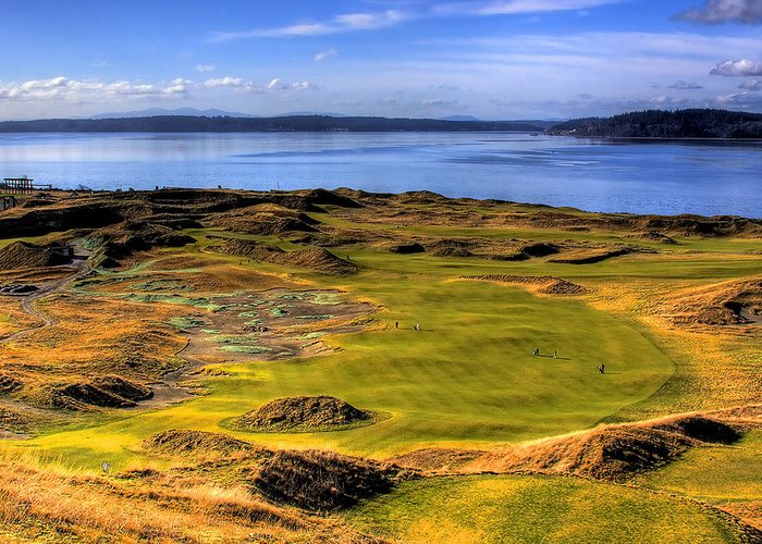 Chambers Bay Golf Course Greeting Card featuring the photograph Chambers Bay Golf Course II by David Patterson
