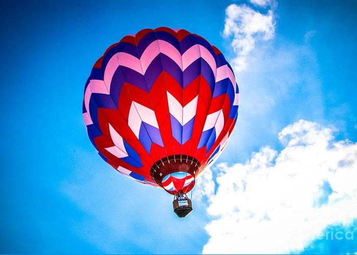 Pilot Greeting Card featuring the photograph Champion Hot Air Balloon by Grace Grogan