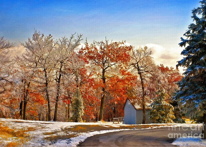 Landscape Greeting Card featuring the photograph Change Of Seasons by Lois Bryan