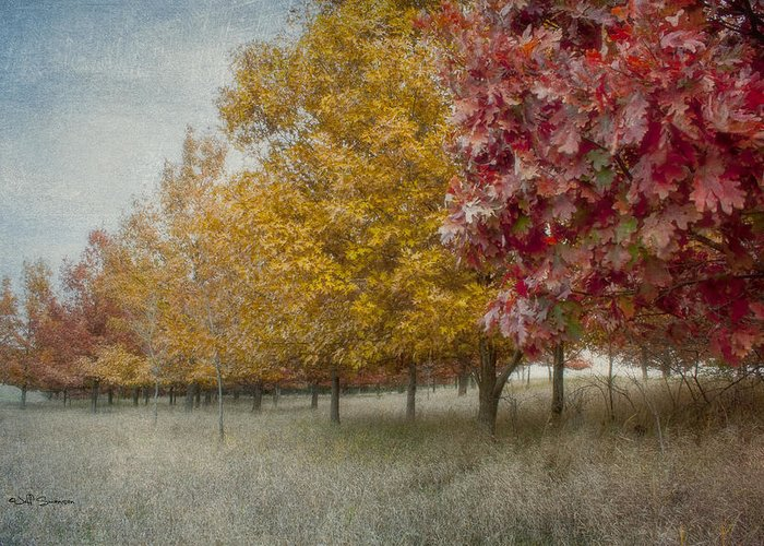 Changing Of The Seasons Greeting Card featuring the photograph Changing Of The Seasons by Jeff Swanson