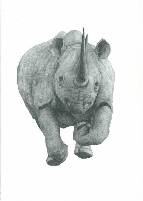 Rhinocerus Drawings Greeting Cards