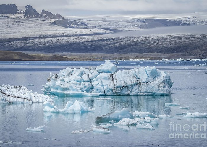 Jokulsarlon Greeting Card featuring the photograph Chasing Ice by Evelina Kremsdorf
