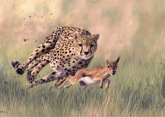 Cheetah Running Greeting Cards