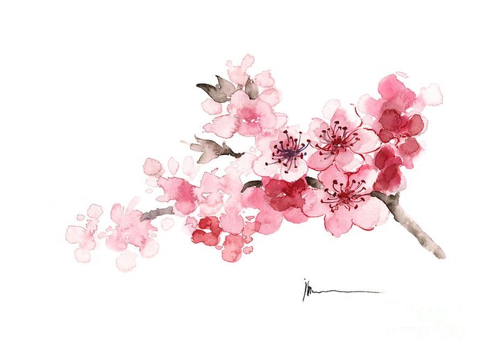 Sakura Greeting Card featuring the painting Cherry Blossom Branch Watercolor Art Print Painting by Joanna Szmerdt
