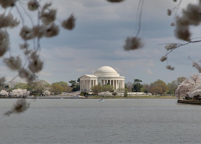 America Greeting Card featuring the photograph Cherry Blossoms With Jefferson Memorial - Washington Dc - 011318 by DC Photographer