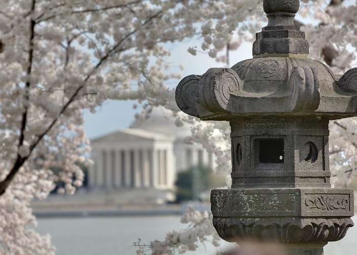 America Greeting Card featuring the photograph Cherry Blossoms With Jefferson Memorial - Washington Dc - 011323 by DC Photographer