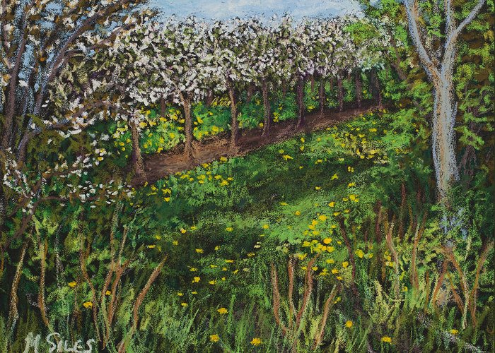 Door County Greeting Card featuring the painting Cherry Orchard Evening by Madonna Siles