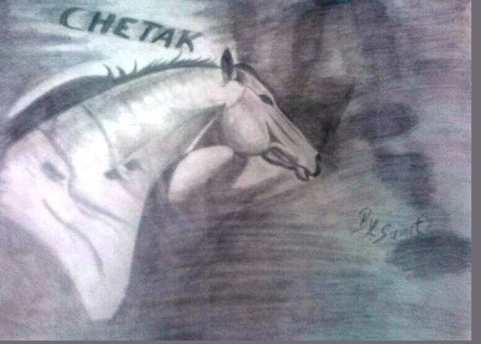 Pencil Drawing Greeting Card featuring the drawing Chetak by Sumit Rana