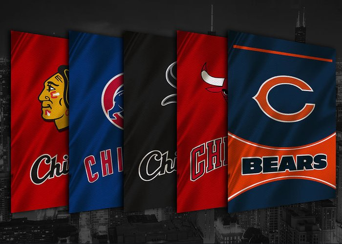 Blackhawks Greeting Card featuring the photograph Chicago Sports Teams by Joe Hamilton