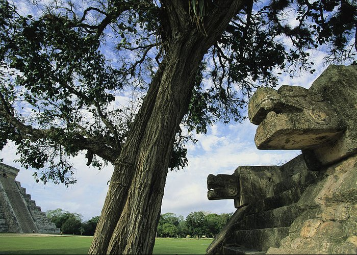 North America Greeting Card featuring the photograph Chichen Itza Scene by Steve Winter