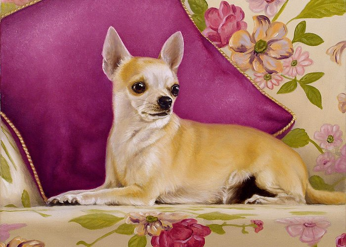Chihuahua Greeting Card featuring the painting Chihuahua II by John Silver