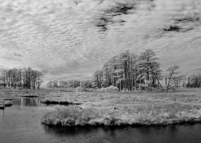 Red Greeting Card featuring the photograph Chincoteague Island Infrared Pano by Jack Nevitt