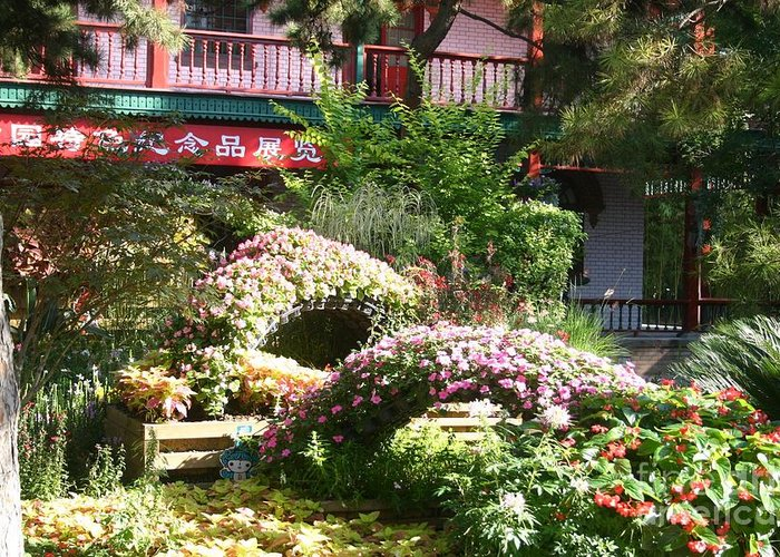 Chinese Garden Greeting Card featuring the photograph Chinese Garden by Barbie Corbett-Newmin