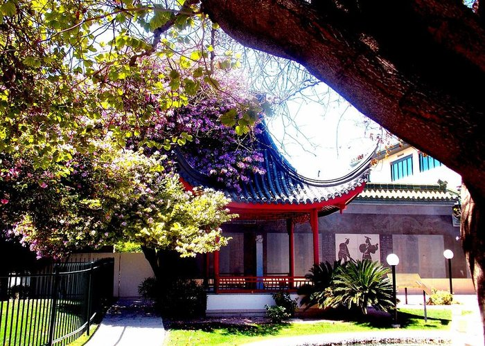 Greeting Card featuring the photograph Chinese Sancuary by Vicki Lomay