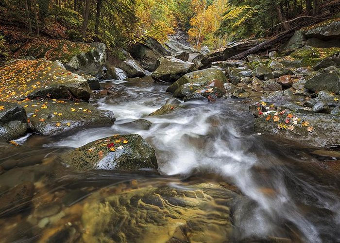 Brecksville Reservation Greeting Card featuring the photograph Chippewa Creek In Fall by Jerry Jelinek