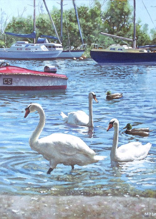 Christchurch Greeting Card featuring the painting Christchurch Harbour Swans And Boats by Martin Davey