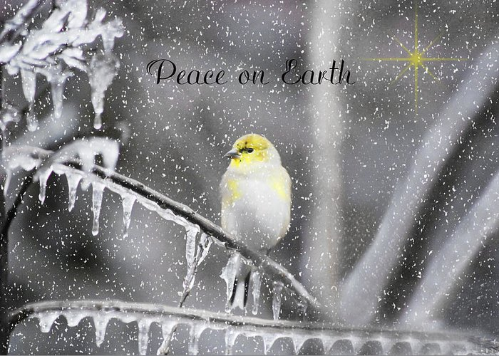 Ice Greeting Card featuring the photograph Christmas Peace by Linda Segerson