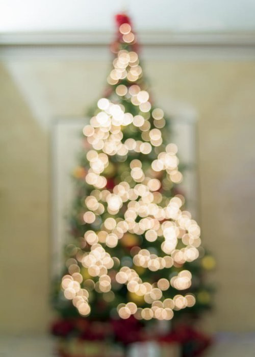 Christmas Greeting Card featuring the photograph Christmas Tree Defocused With Bokeh Lights by Jit Lim