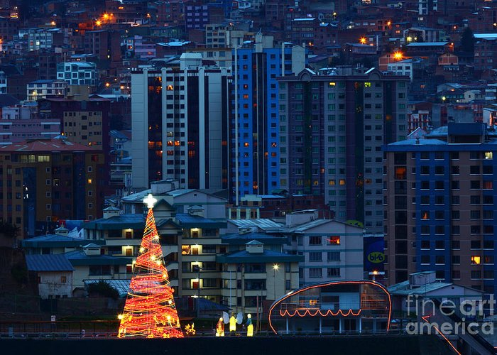 Christmas Tree Greeting Card featuring the photograph Christmas Tree In La Paz by James Brunker