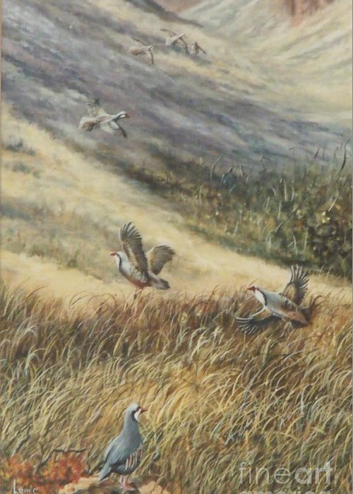 Chukars In Flight Greeting Card featuring the painting Chukars In Flight by Lynne Parker