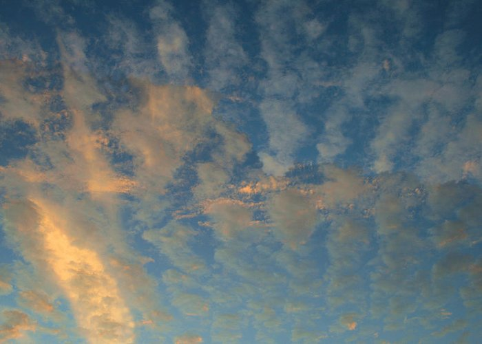 Cirrocumulus Morning Greeting Card featuring the photograph Cirrocumulus Morning by Ellen Henneke