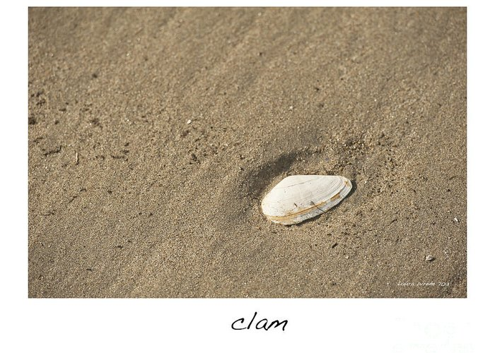 Clam In The Sand Greeting Card featuring the photograph Clam by Artist and Photographer Laura Wrede