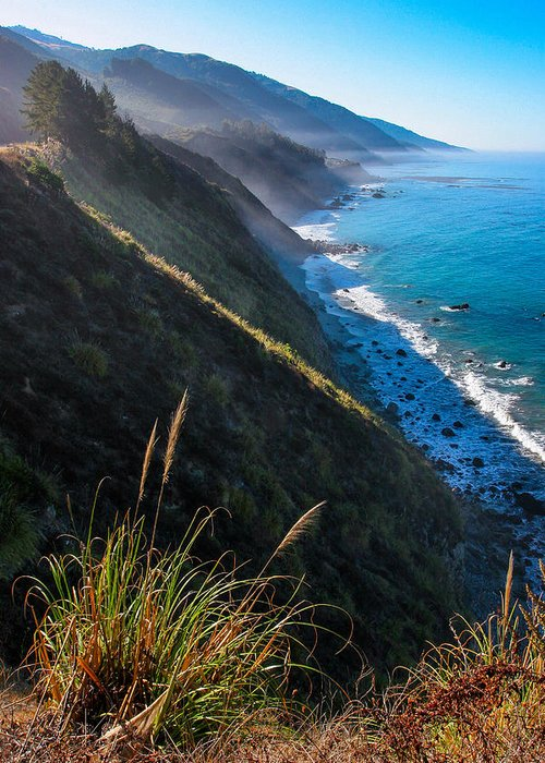 Landscape Greeting Card featuring the photograph Cliff Grass At Big Sur by Adam Pender
