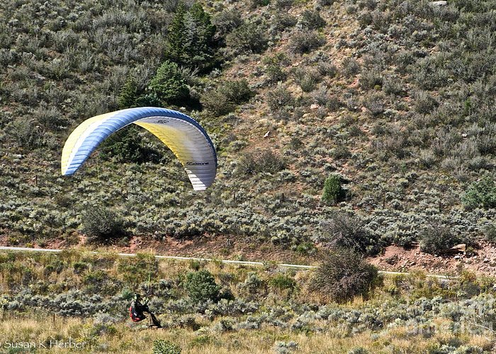 Para Gliding Greeting Card featuring the photograph Close by Susan Herber