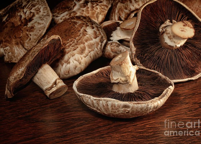 Agaricus Greeting Card featuring the photograph Closeup Of Fresh Portobello Mushrooms by Sandra Cunningham