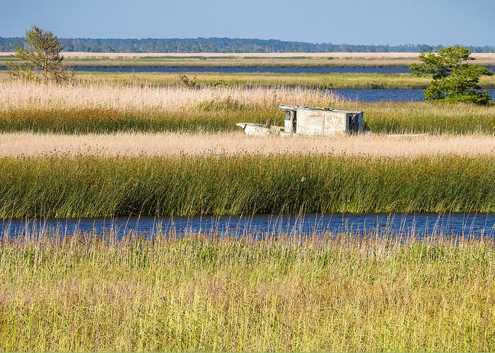 Coastal Landscape Greeting Card featuring the photograph Coastal Marshlands With Old Fishing Boat by Bill Swindaman