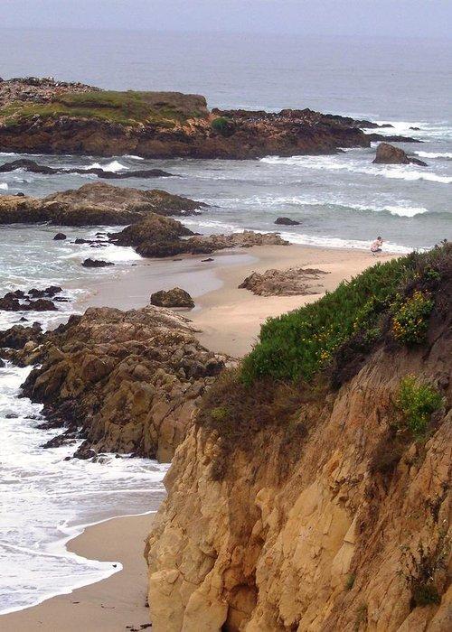 Coast Greeting Card featuring the photograph Coastal Scene 8 by Pharris Art