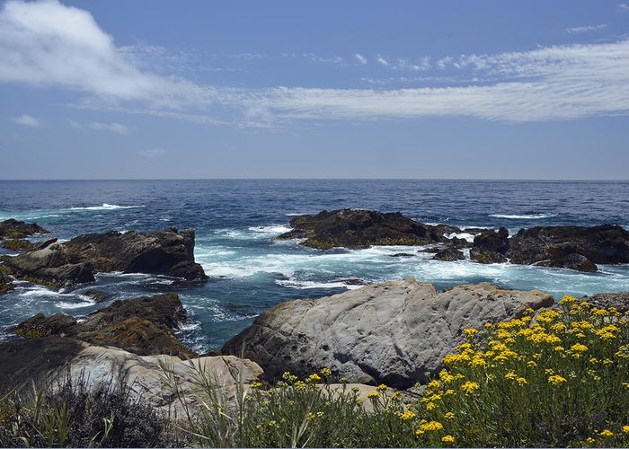 Point Lobos Greeting Card featuring the photograph Coastline And Flowers In California's Point Lobos State Natural Reserve by Bruce Gourley