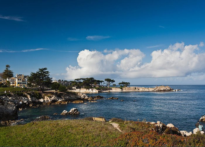 Monterey Bay California Greeting Cards