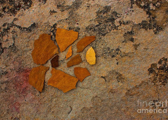 Rocks Greeting Card featuring the photograph Colorado Sandstone by Barbara Schultheis