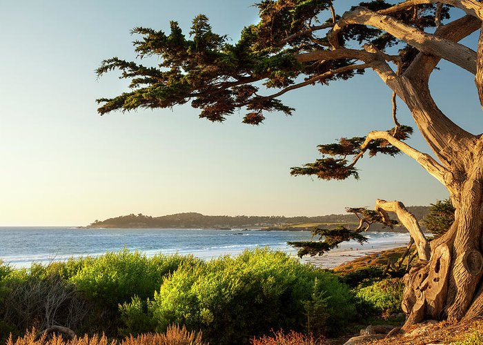 Scenics Greeting Card featuring the photograph Colorful Beachfront In Carmel-by-the-sea by Pgiam