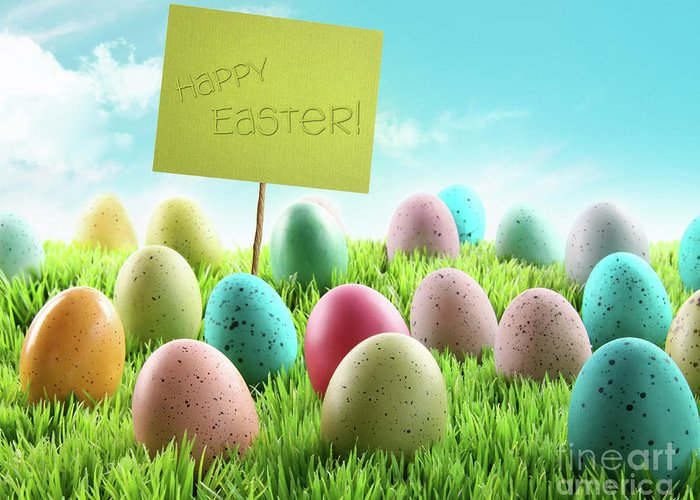 April Greeting Card featuring the photograph Colorful Easter Eggs With Sign In A Field by Sandra Cunningham