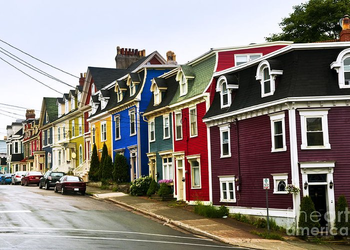 Street Greeting Card featuring the photograph Colorful Houses In Newfoundland by Elena Elisseeva