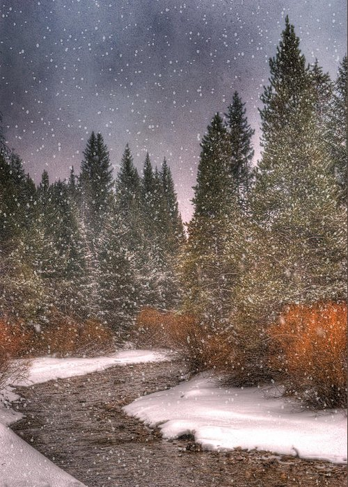 Beautiful Greeting Card featuring the photograph Colours Of Winter by Juli Scalzi