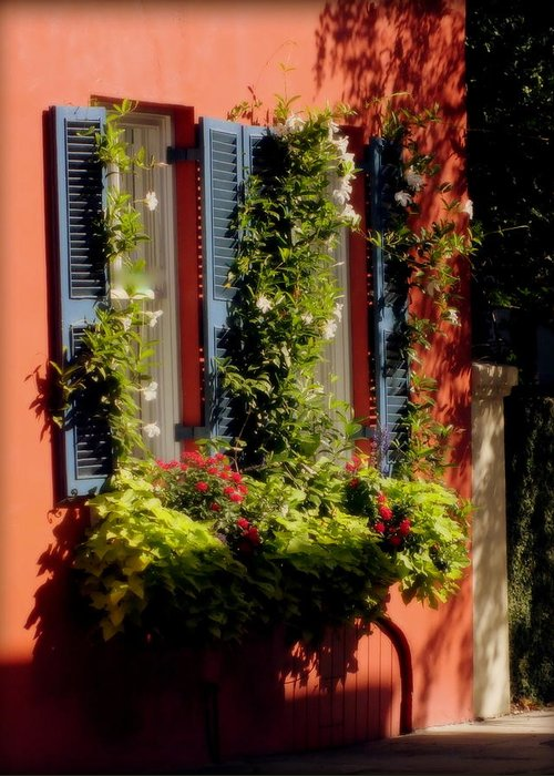 Charleston Greeting Card featuring the photograph Come To My Window by Karen Wiles