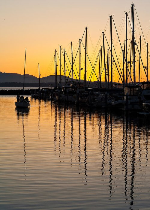 Sailboat Greeting Card featuring the photograph Coming In by Mike Reid